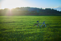 Bicycle on grass field in the morning. Blue modern bicycle on grass field in the morning at the sunrise Stock Images