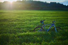 Bicycle on grass field in the morning. Blue modern bicycle on grass field in the morning at the sunrise Stock Photo