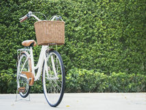 Bicycle with green garden background Royalty Free Stock Photo