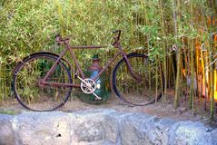 Bicycle. In the green garden Stock Images