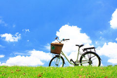 Bicycle on the green grass Royalty Free Stock Images