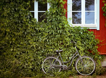 Bicycle with green and house in background Stock Image