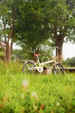 Bicycle on green meadow Stock Images