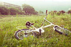 Bicycle on green meadow Royalty Free Stock Photos