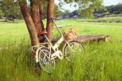 Bicycle on green meadow Royalty Free Stock Photo