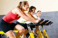 Bicycle in the gym Stock Image