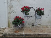 Bicycle with hanging plants in front of a whitewashed brick wall in Alberobello, Italy royalty free stock images