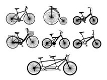 Bicycle illustration. Vector illustration of various models and types of bicycle vector illustration