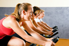 Free Bicycle In The Gym Stock Photos - 12398323