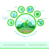 Bicycle infographics, vector elements. Stock Photography