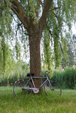 Bicycle in an italian garden Royalty Free Stock Photography