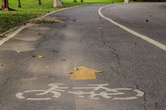 Bicycle Lane. The Bicycle Lane in the Park at noon Stock Photo