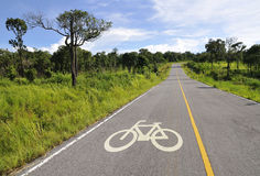 Bicycle lane in forest Royalty Free Stock Image