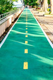 Bicycle lane. Green bicycle lane in the park Royalty Free Stock Photo