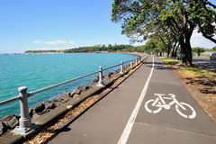 Free Bicycle Lane In Auckland, New Zealand Stock Image - 35588351