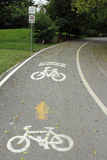 Bicycle lane. In the park Royalty Free Stock Images