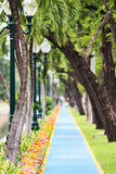 Bicycle lane. Bicycle lane in the park Stock Photo