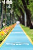 Bicycle lane. Bicycle lane in the park Stock Image