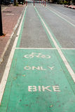 Bicycle lane in the park. Asphalt road Stock Photo