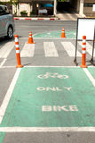 Bicycle lane in the park. Asphalt road Stock Photography