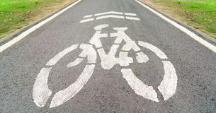 Bicycle lane in a park. Bicycle lane on asphlat road in a park Royalty Free Stock Photography