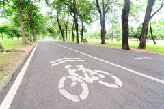 Bicycle lane in a park. Bicycle lane on asphlat road in a park Royalty Free Stock Photos