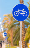 Bicycle lane at sunset with palms Stock Images