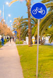 Bicycle lane at sunset with palms Royalty Free Stock Photos
