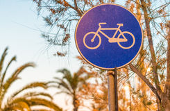 Bicycle lane at sunset with palms Royalty Free Stock Image