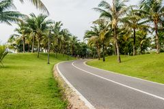 Bicycle lane or Bicycle track with road in public park for desig Stock Photography