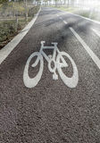 Bicycle Lanes in Park. Background four your design royalty free stock photo