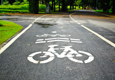 Bicycle Lanes in Park Stock Images