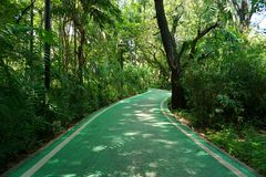 Bicycle lanes in the Vachirabenjatas park Rot Fai park stock images