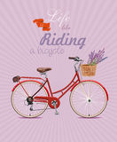 Bicycle with lavender in basket. Poster in vintage style. Vector illustration. Stock Photo