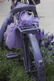 Bicycle with lavender Stock Photos