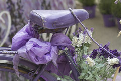 Bicycle with lavender Royalty Free Stock Images