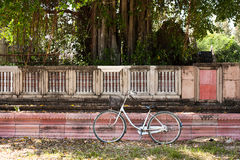 Bicycle on the lawn. Near the wall Royalty Free Stock Images