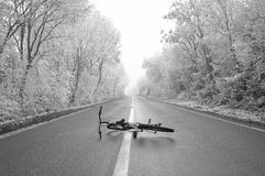 Bicycle laying on the forest road Royalty Free Stock Photo