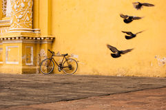 Bicycle Leaning Against Yellow Wall. Pigeons take flight next to a bicycle leaning against the aged, yellow wall of La Merced Church in Antigua, Guatemala Stock Images