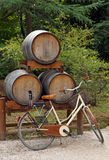 Bicycle leans against wine barrels Royalty Free Stock Image
