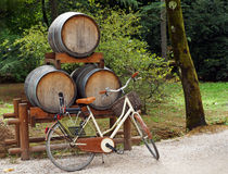 Bicycle leans against wine barrels Royalty Free Stock Images