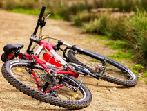 Bicycle lies on country road. Royalty Free Stock Photo