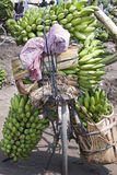 Bicycle loaded with bananas in Africa Stock Photos