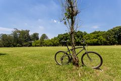Bicycle locked Royalty Free Stock Photos