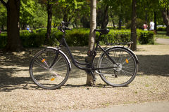 Bicycle locked to tree. In country park Eger Hungary Royalty Free Stock Photography