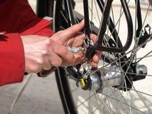 Bicycle maintenance royalty free stock photo
