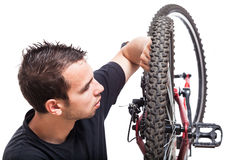Bicycle maintenance Royalty Free Stock Image