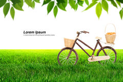 Bicycle on Meadow royalty free stock image