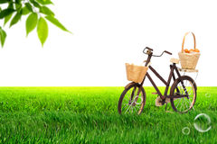 Bicycle on Meadow royalty free stock photography