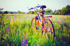Bicycle on meadow. Bicycle on a rural road with grass in the meadow spring Stock Images